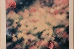 'Garden, 2 of 5', Collage on Polaroid, 11 x 9 cm, 2019